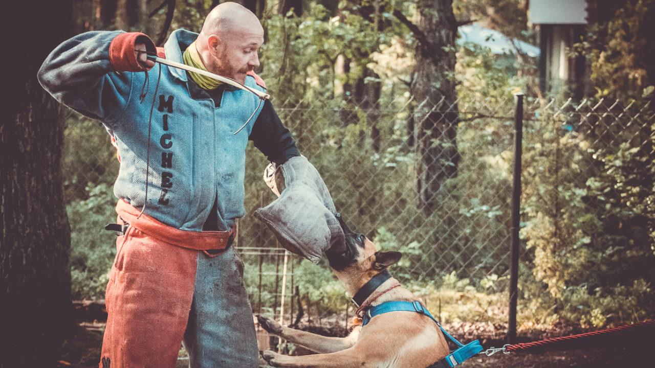 Szkolenie psów Radzymin